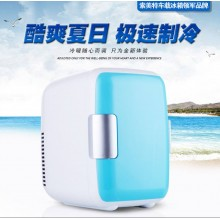 4L Mini Portable Cooler & Warmer  Cosmestic Cooler + Fridge